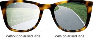 polarized-glasses